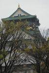 6-10 April 2006_�ʨ�������a_Sakura00001