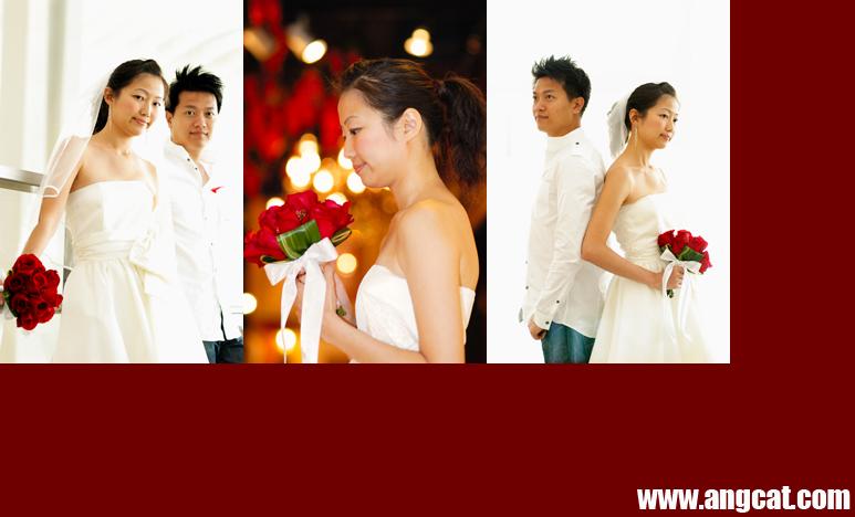 http://images4.fotop.net/albums2/angcat/JKc/DSC_8830_c_a.jpg