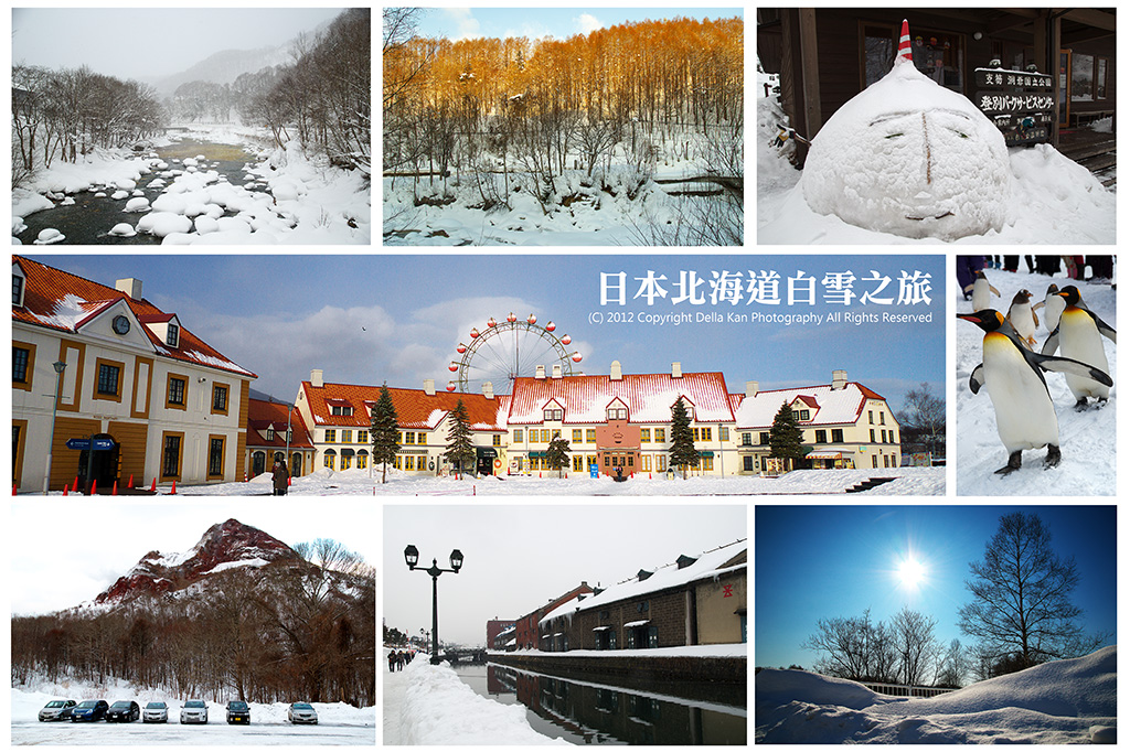 日本北海道白雪之旅2012