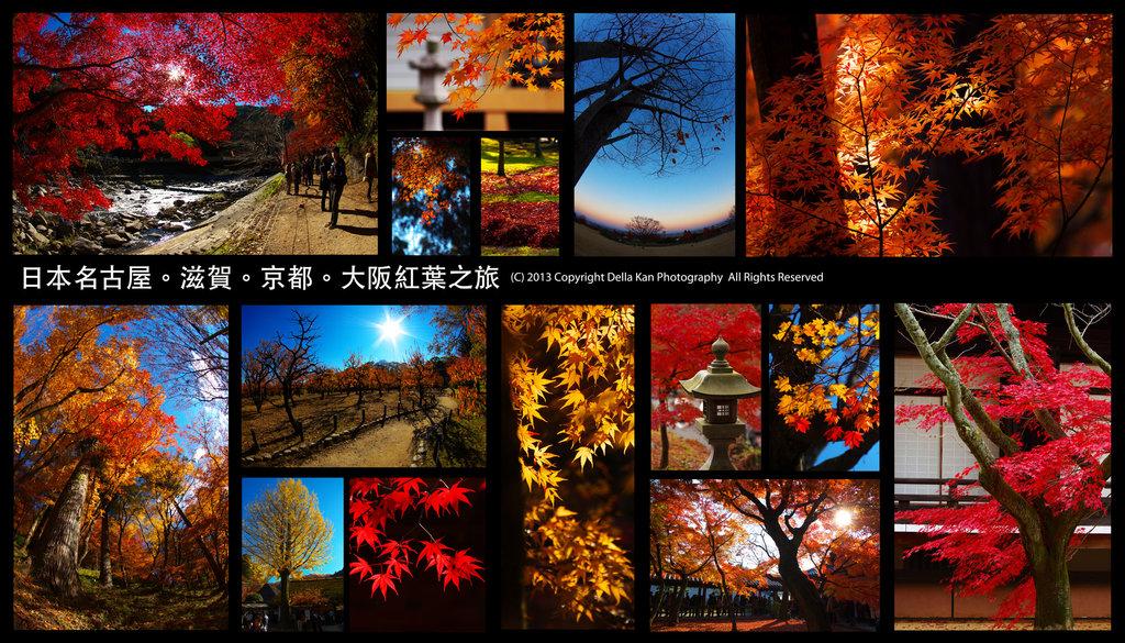 日本大阪紅葉之旅2013