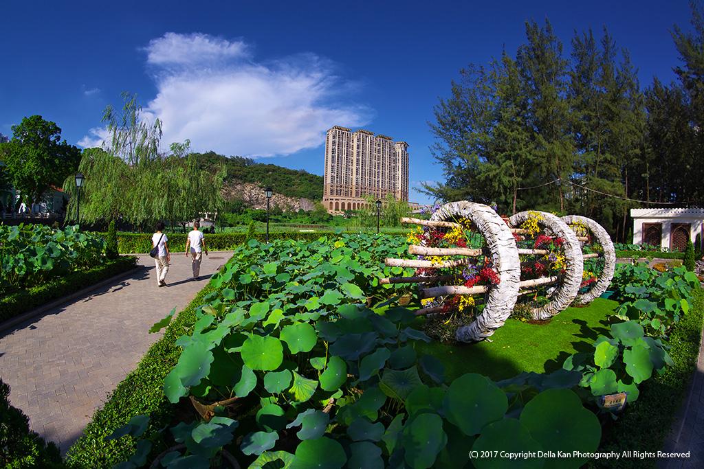 Lotus Show in Macau 2017