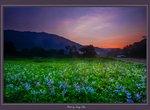 Sunrise in Yuen Long