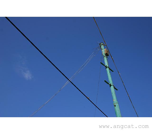 https://images4.fotop.net/albums2/angcat/Lei_Yue_Mun/IMG_2594_a.jpg