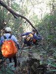 跨獨孤山脊穿林入澗 DSC00610