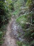 有段泥濘路, 小心過 DSC02133
