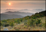 tms_20210320_14s